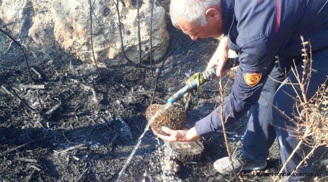 Malatya'da yangından etkilenen kirpiyi itfaiyeciler kurtardı