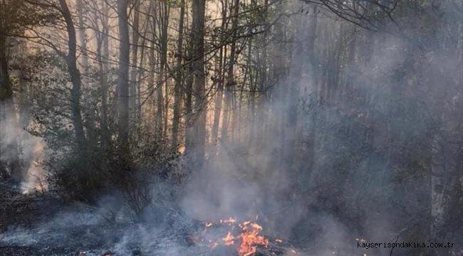 Ordu'da orman yangınına müdahale eden kişi yaşamını yitirdi