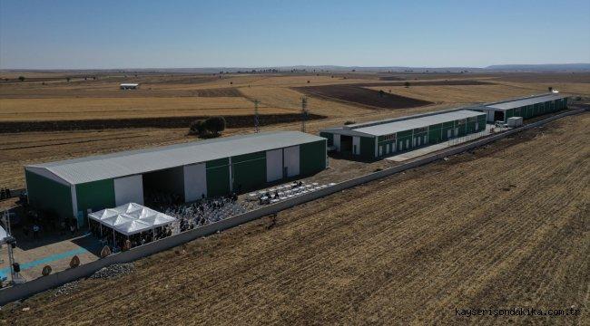 """Sivas'ta """"Süt Sığırcılığı Eğitim Çiftliği"""" yıllık 6 ton karkas et üretecek"""
