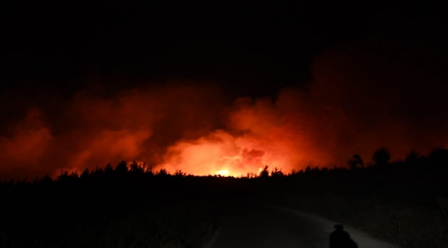 Adana Aladağ'da çıkan orman yangınına müdahale ediliyor