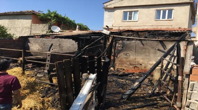 Balıkesir'de ahır yangınında 13 küçükbaş hayvan telef oldu