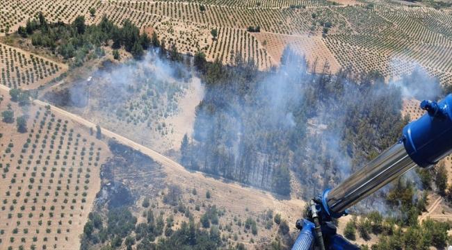 Denizli'de çıkan orman yangınında 2 hektarlık alan zarar gördü