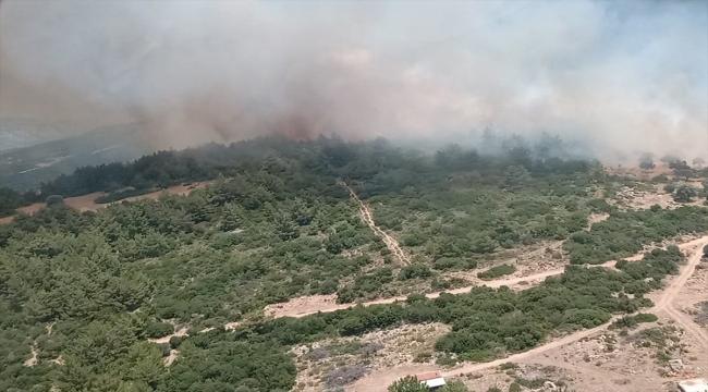 GÜNCELLEME - İzmir Karaburun'da makilik alanda çıkan yangın kontrol altına alındı