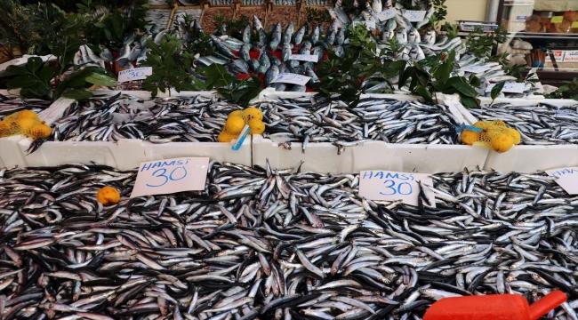 Hamsi ve istavrit bolluğu balıkçı tezgahlarını şenlendiriyor